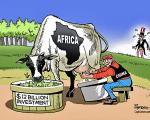 africaandchinawithcow
