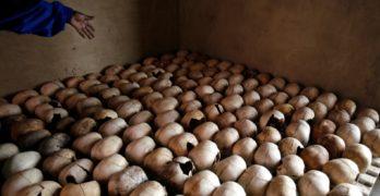 America's secret role in the Rwandan genocide